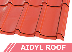 Aidyl Roof