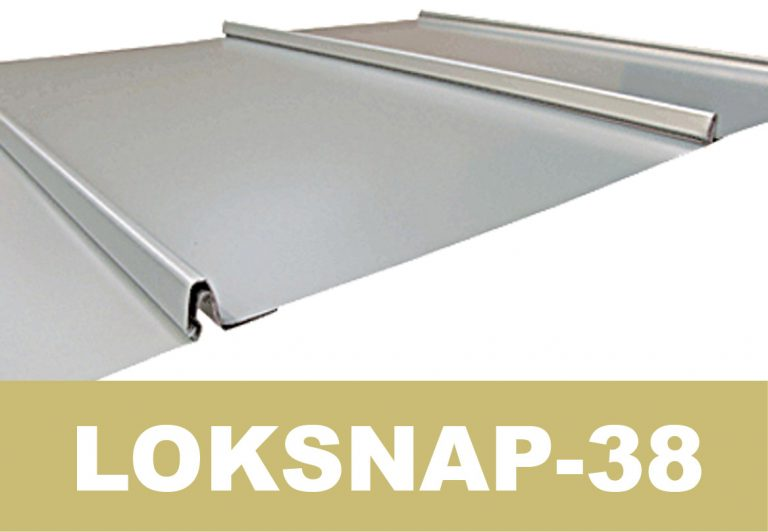 loksnap-38 web